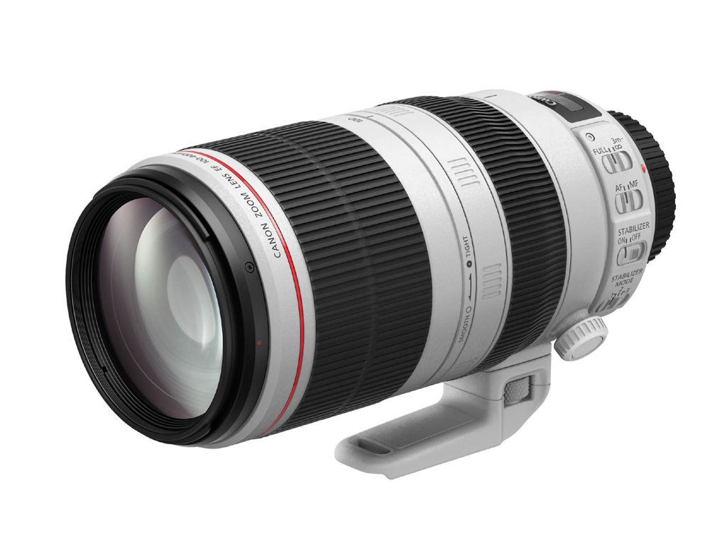 Canon Objektiv EF 100-400mm 1:4,5-5,6L IS II USM