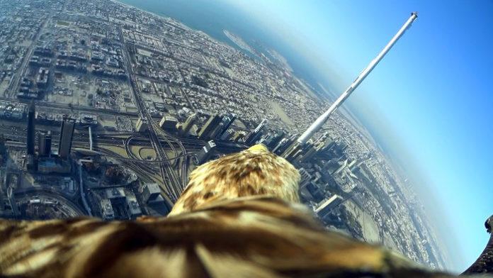 Sony Action Cam Mini beim Weltrekordflug